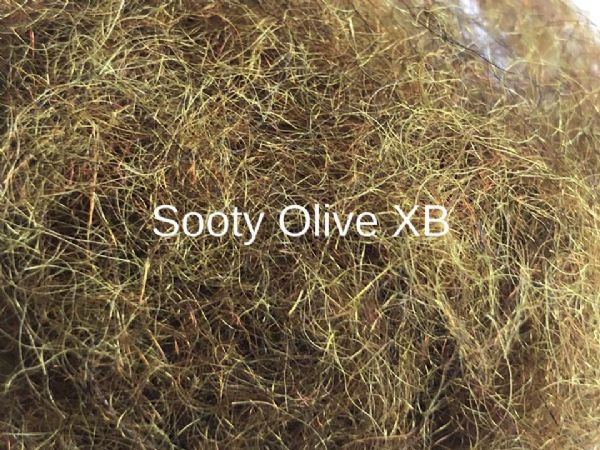 Irish Sooty Olive XB